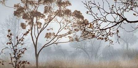 Προσφορά Seba John – Early Morning Mist II
