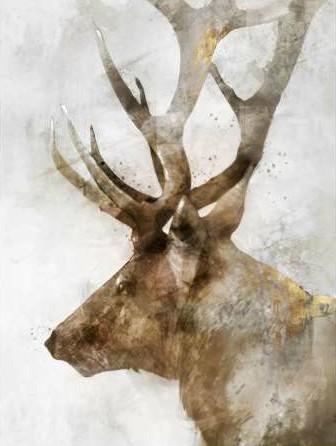 Roko Ken – Stoic Elk