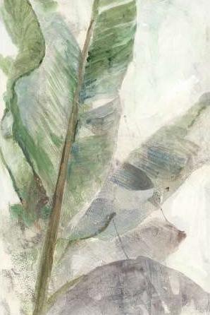 Theodosiou Matina – Tropic Plant