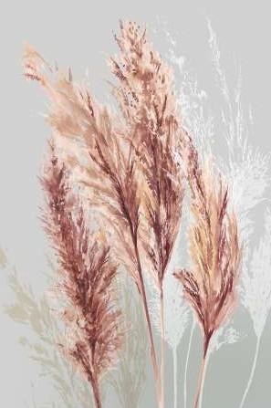 Jensen Asia – Blushing Pomp Grass II