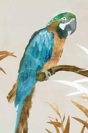 Isabelle Z – Blue Parrot I